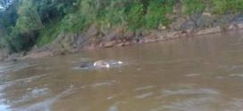 Brigada Militar localiza corpo boiando no leito do rio Uruguai