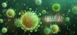 Sobe para 355 os casos confirmados de coronavírus na região