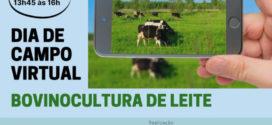 Emater/RS-Ascar promove Dia de Campo Virtual na área de bovinocultura de leite