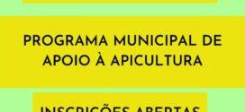 Abertas inscrições para o Programa Municipal de Apoio à Apicultura
